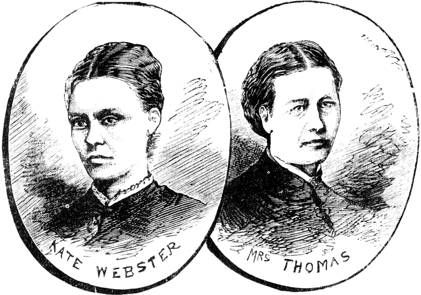 The murder of Julia Thomas: the dismembered and boiled widow who shocked Victorian London.